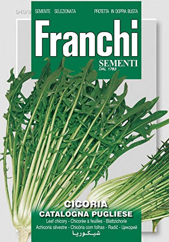 Franchi Sementi DBO40-9 Schnittzichorie Catalogna Pugliese (Salatsamen)