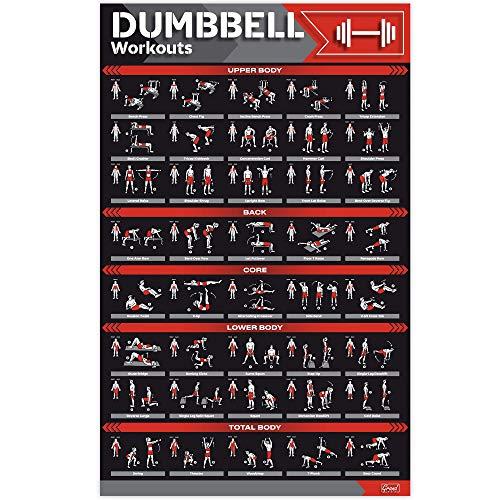 Laminiertes großes Hantel-Workout-Poster, perfektes Hantel-Übungsposter für Zuhause, große Größe 43,2 x 68,6 cm, Übungstabelle enthält 40 illustrierte Übungen für Hanteln