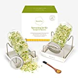 Keolia Sprouting Jar Seed Sprouter - 2 Mason Jars Broccoli Seed Sprouting Kit, Sprouting Jars with...