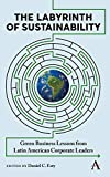 Labyrinth of Sustainability: Green Business Lessons from Latin American Corporate Leaders (Anthem Environment and Sustainability Initiative)
