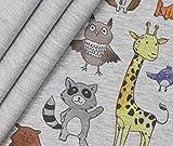0,5m French Terry Cute Baby Animals - hellgrau meliert