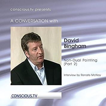 David Bingham - Non Dual Pointing Part 2
