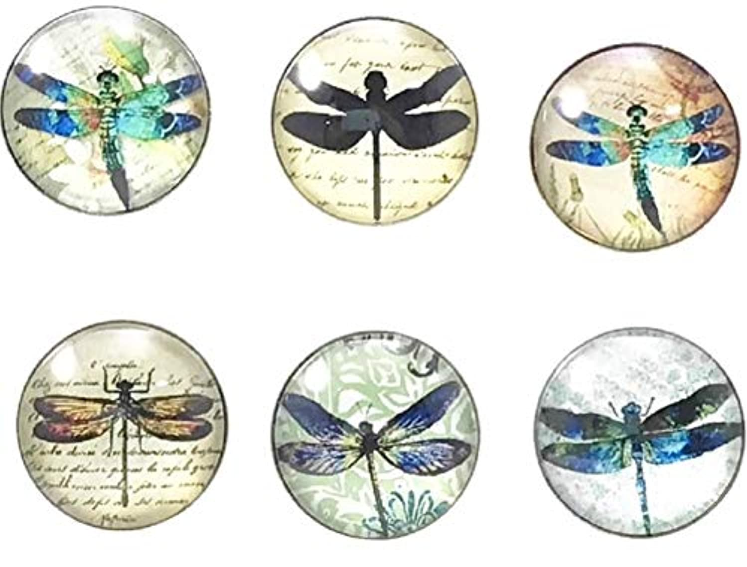 Dragonfly Snap Charm Set Includes 6 Snaps (Multi Set Two)