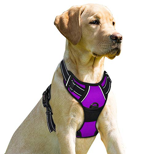 BARKBAY Dog Harness No-Pull Pet Harness Adjustable Outdoor Pet Vest 3M Reflective Oxford Material Vest for Dogs Easy Control for Small Medium Large Dogs(Purple,XL)