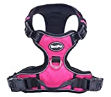 EXPAWLORER Best No-Pull Dog Harness - Reflective Outdoor Adventure Pet Vest with Handle¡
