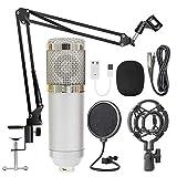 Aaren Suspensión BM800 Profesional Kit de micrófono en Vivo Estudio de Difusión de grabación Micrófono Condensador Set y Alta compatibilidad (Color : Silver)