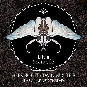 The Ariadne's Thread