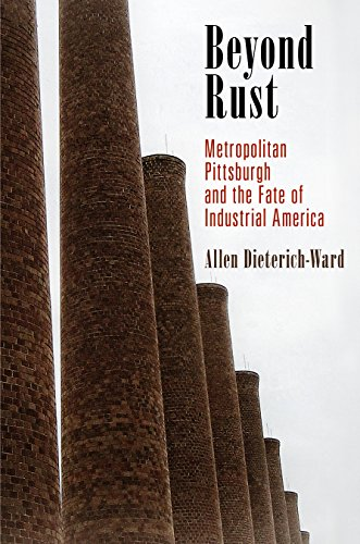 Beyond Rust: Metropolitan Pittsburgh and the Fate of Industrial America (Politics and Culture in Modern America)