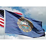 Allied Flag - 4  x 6  Outdoor Nylon New Hampshire State Flag - Made in USA - Vivid Color and Fade Resistant - Reinforced Hem and Brass Grommets