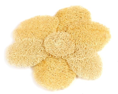 Loofah Savannah Dahlia Exfoliant Pad