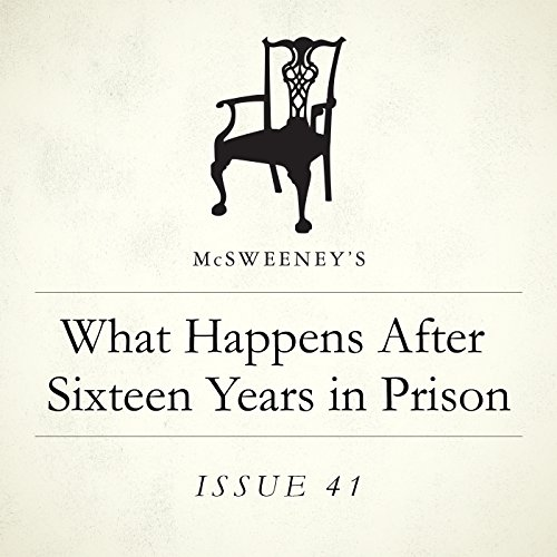 What Happens After Sixteen Years in Prison? audiobook cover art