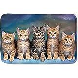 D-M-L Animal Cat Print Flannel Doormat Zapatos Antideslizantes Scaper Floor Mat Alfombra Delgada para Cocina Interior 36 x 24 in