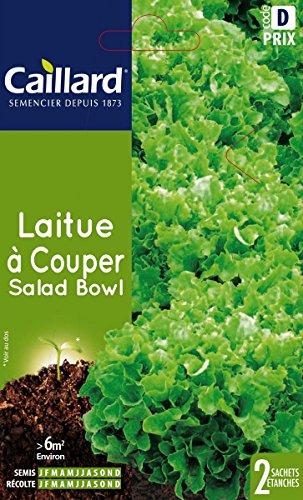 Caillard PFCC13507 Graines de Laitue à Couper Salad Bowl