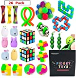 EDsportshouse Sensory Toys Bundle-Stress Relief Fidget Hand Toys for Kids and Adults,Sensory Fidget and...