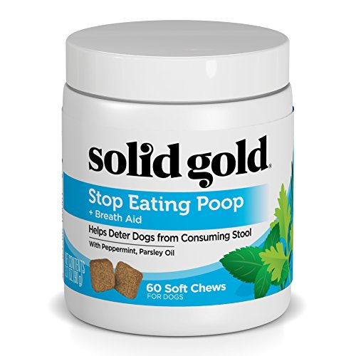 Solid Gold Stop Eating Poop for Dogs with Coprophagia - Natural Chews with Peppermint - 60 Ct