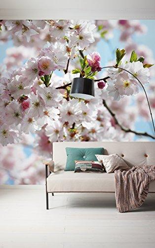 Vliestapete in Kirschblüten-Optik