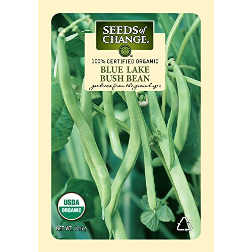 Seeds of Change Certified Organic Blue Lake Bush Bean