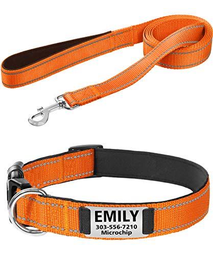 Taglory Halsband Leine Set, Weich Gepolstertes Personalisierte Hundehalsband mit 1.8m Hundeleine Reflektierend für Kleine Mittel Großer Hunde,Orange