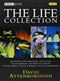 David Attenborough - The Life Collection Box Set [Reino Unido] [DVD]