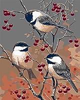 大人のための数字による動物の鳥DIYペイント 子供のためのキャンバス油絵キット大人3ブラシの初心者ピグメントクリスマスの装飾16x20インチフレームレス