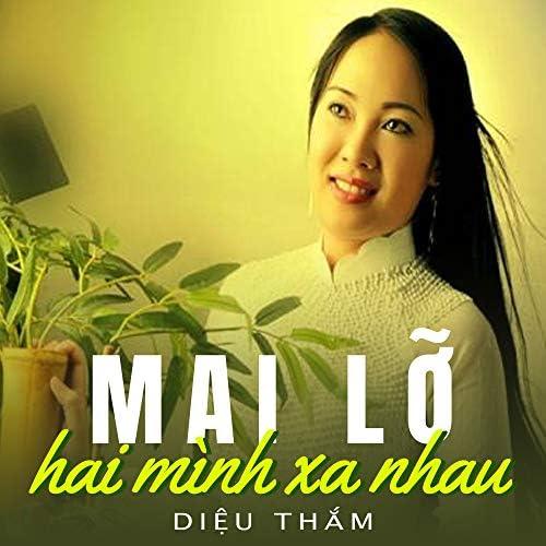 Diệu Thắm, Việt Hoàn & Công Hoàn