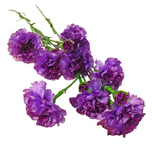 6 Heads Artificial Carnation Flowers Flower Bush for Wedding Bouquets Home Garden Decoration Floral Arrangements