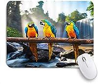 ECOMAOMI 可愛いマウスパッド オウム鳥青黄色羽の木の枝滝岩緑の植物日光自然風光明媚な 滑り止めゴムバッキングマウスパッドノートブックコンピュータマウスマット