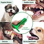 Brosse a Dent Chien Jouet à Macher Jouets de Nettoyage des Dents Cadeau pour Chien Jouets en Caoutchouc Naturel,Non Toxique et Durable #2