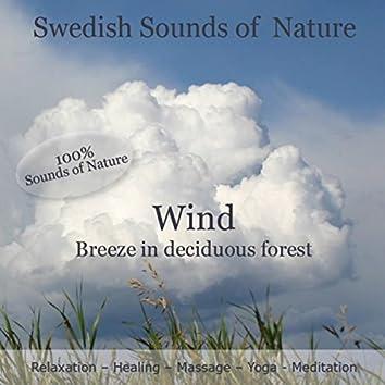 Swedish Sounds of Nature - Wind
