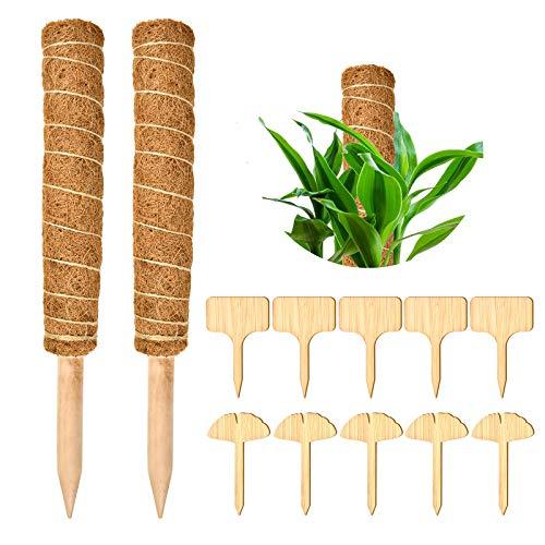 EKKONG Pflanzstab Kokos Rankstab Rankhilfe 2 Stück,Blumenstab mit 10 Holzetiketten für Pflanzenname, für Zimmerpflanzen, Pflanzstab Kokos Rankstab Rankhilfe Blumenstab (40)