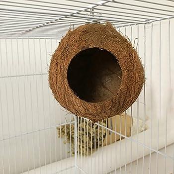 ColorfulLaVie Cages à Oiseaux nids Animal de Compagnie nid de Noix de Coco, Perroquet Perche Naturelle, Petits Animaux lit Confortable Oiseau nid de Sommeil 1 PC