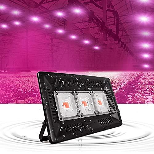BrightBulb Ultrafino Planta Luz de inundación Planta Crecimiento Rosa Luz LED Carpa Carpa para Invernadero de jardín Planta Luces IP67 Impermeable-EU Plug