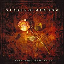 Corroding from Inside by Searing Meadow