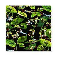 Kanvas Tropic Rainforest Frogs カエルの日常生活 木製 額縁 フォトフレーム 壁掛け 木製 横縦兼用 絵を含む 40×40cm