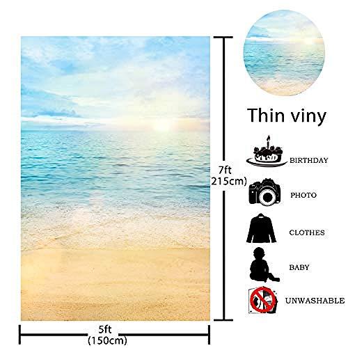 Sommer Sea Beach Sonnenschein Fotografie Hintergründe Blauer Himmel Sand Hintergrund für Urlaub Hochzeit Geburtstagsfeier Banner Baby Shower Fotostudio Photobooth Requisiten-10'x10 '