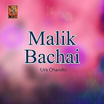 Malik Bachai