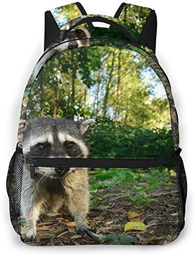 Racoon Wildlife Logo Lässiger Laptop-Rucksack Leichter, weit offener Schulrucksack für Frauen und Männer