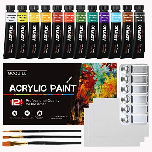 Pinturas acrílicas para artistas 12 colores vibrantes 4 pinceles 1 paleta 3...