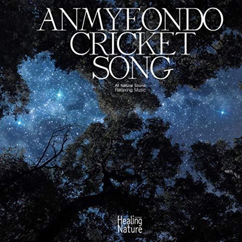 안면도 귀뚜라미의 노래 Anmyeondo cricket song