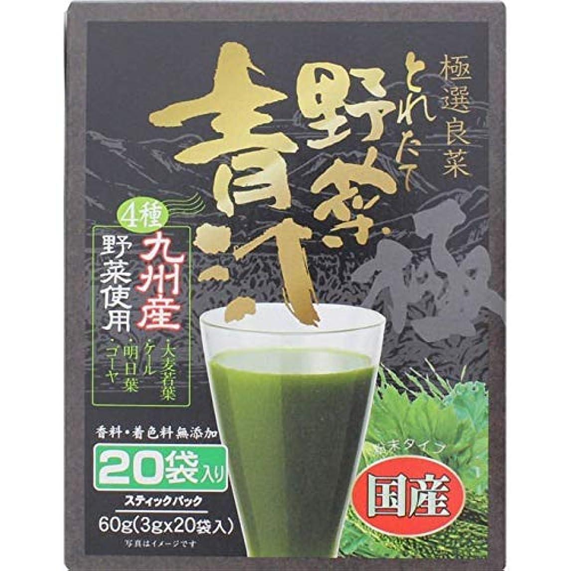 絶滅させる公園マサッチョ新日配薬品 4種の九州産青汁 3g×20包×2個