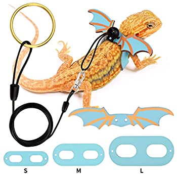 Bearded Dragon Leash and Harness Adjustable Leather Wings Costume Clothes from Baby to Juvenile Lizard Iguana Gecko Chameleon Hamster Ferret Reptile Walking Carrier Accessoreis S M L 3 Pack Sky Blue