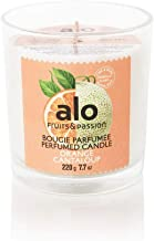 Fruits and Passion Handmade and Composed of Plant-Based Wax Candle (Orange Cantaloup)