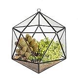 JINCAO Pot de fleurs/Jardinière à suspendre en verre Forme géométrique ouverte...