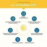 Zoom IMG-1 vitamine d3 k2 mk7 1000
