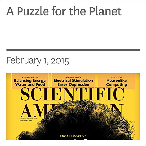 A Puzzle for the Planet audiobook cover art