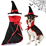 ASOCEA - Disfraz de perro de Halloween con forma de cono para gato, vampiro, disfraz de fiesta de juego de rol, accesorio de vacaciones para cachorros, gatitos, pequeños y medianos perros