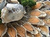 【魚友商店】子持ち鮒寿司 琵琶湖産天然にごろぶな LLサイズ(160g~170g)スライス