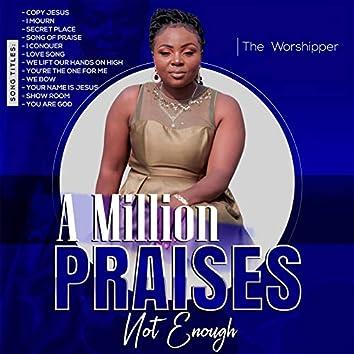 A Million Praises Not Enough