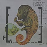 Songtexte von Front Line Assembly - FLAvour of the Weak