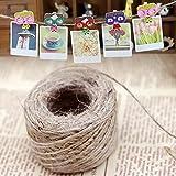 wdlhy 50m natur-Jute Twine Rustikal Schnur Wrap Craft Seil selbstgemachten Garten Decor